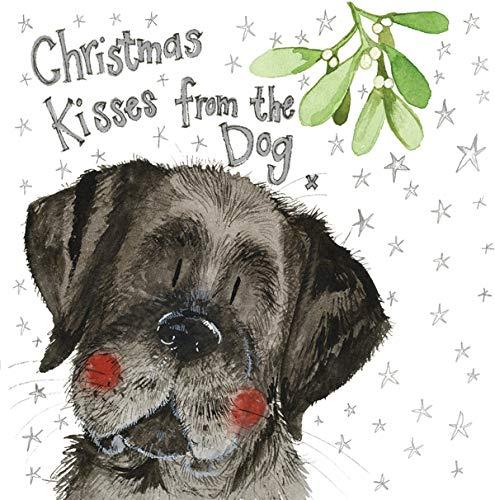 Alex Clark Kerst Kussen van De Hond Kerstkaart