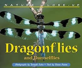 Nature Close-Up - Dragonflies and Damselflies