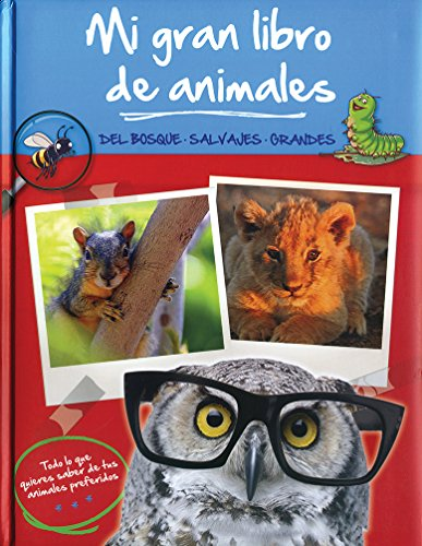 Mi gran libro de animales: del bosque salvajes grandes para niños y niñas