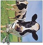Manteles individuales para mesa de comedor Dos vacas Holstein de pie en el prado Aislamiento antideslizante Mantel individual Poliéster PVC lavable para cocina Banquete Fiesta Set de 6 12x12 pulgadas