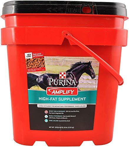 Purina Amplify | High-Fat Horse Supplement | Diet Enrichment Nuggets - 25 Pound (25 LB) Bag