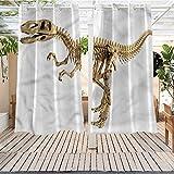 Dinosaur Outdoor Grommet Window Curtain Fossil Dino Skeleton Energy Efficient,Room Darkening 108x96 INCH -  Trelemek