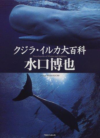 クジラ・イルカ大百科の詳細を見る
