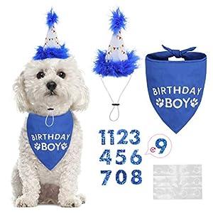 BINGPET Dog Birthday Bandana Scarf and Reusable Dog Birthday Hat with 0-8 Figures