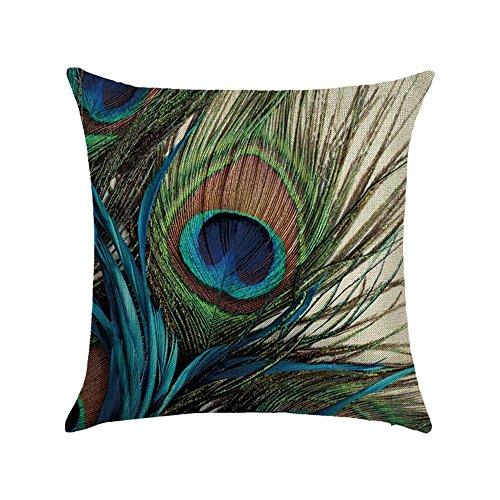Hengjiang WEIANG Bird Peacock Art Throw Pillow Double Sided Cushion Covers Cotton Linen Home Sofa Decor Gift Feather (27)