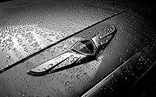 Hyundai Motors Genuine 86320B1000 Front Wing Hood Grill Emblem 1-pc For 2015 Hyundai Genesis Sedan