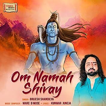 Om Namah Shivay - Single
