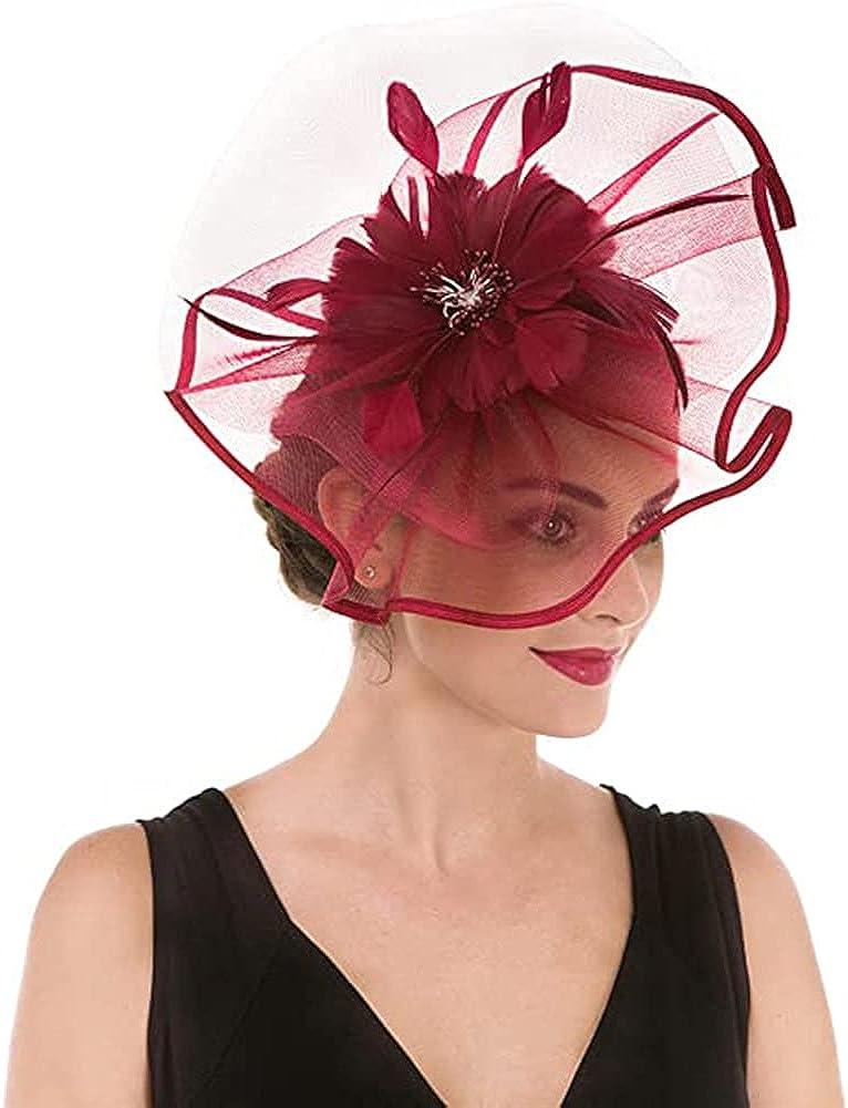 Women?s Fascinator Hat Vintage Tea Party Flower Hat for Women Mesh Feathers Cap