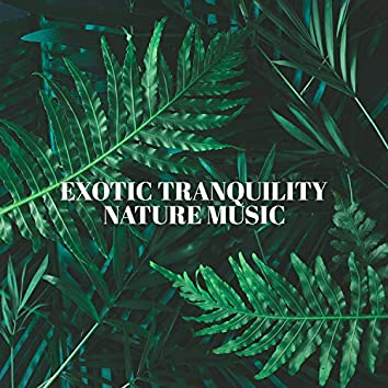 Exotic Tranquility: Relaxing Exotic Nature Music to Overcome Anxiety and Fall Asleep Quickly