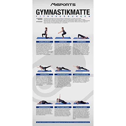 MSPORTS Übungsposter für Gymnastikmatten ca. 44x 21 cm | 9 Übungen