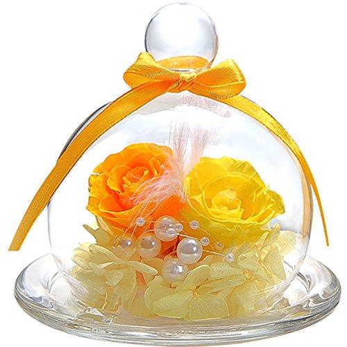 ティートサイトプリザーブドフラワーフラワーアレンジラッピング済みガラスポット入り2輪(バライエロー×オレンジ)