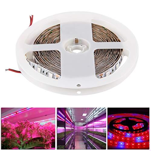 Weichunya 300 LED SMD 5050 Une Plante hydroponique pour Serre de l'aquarium 3: 1 élève la lumière de la Corde du Panneau, 60 LED/m, Longueur: 5m