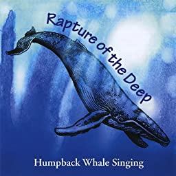 Amazon Music Unlimited Paul Knapp Jr Rapture Of The Deep Humpback Whale Singing