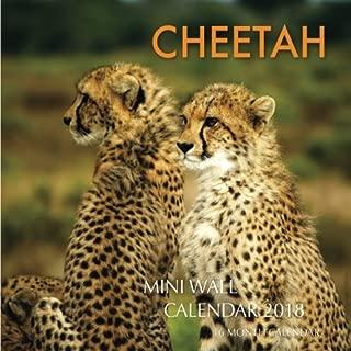 Cheetah Mini Wall Calendar 2018: 16 Month Calendar