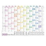 Wandkalender 2020 A3 [Rainbow], 42 x 30 cm für 14 Monate Dez 2019 - Jan 2021 | Wandplaner mit Ferien- und Feiertage-Übersicht, FSC®-Papier, gefalzt + extra A4-Kalender!