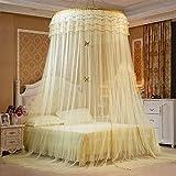 GRD Moskitonetz Prinzessin Traum Schmetterling Kuppel mücken Netz Doppelbett Reise with A Full Hanging Kit Durch (gelb)