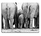 Naturkautschuk-Gaming-Mousepad Rückseite Einer Elefantenherde, die nahe beieinander in Schwarz und Weiß Steht Addo Elephant Park South Africa (Mauspad/Gaming-Mauspad)