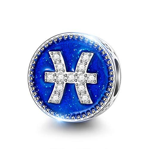 NINAQUEEN Charm für Pandora Charms Armband Fische Sternzeichen Geschenk für Frauen Silber 925 Zirkonia Antibakterielle Eigenschaften Schmuck Damen mit Schmuckkasten