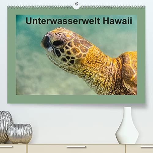 Unterwasserwelt Hawaii (Premium, hochwertiger DIN A2 Wandkalender 2022, Kunstdruck in Hochglanz)