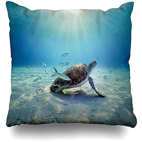 qinzuisp Kussensloop ABC Antillen Onderwater Turtles Pelikanen Views Rond Kleine Vogel Caribisch Curaçao Nederlands Ontwerp Kussensloop Vierkante grootte es Zippered Decor Kussensloop 45X45CM