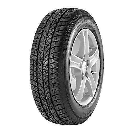 Novex All Season - 205/55R16 91H - Neumático todas las Estaciones