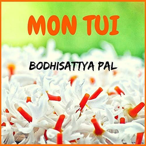 Bodhisattya Pal