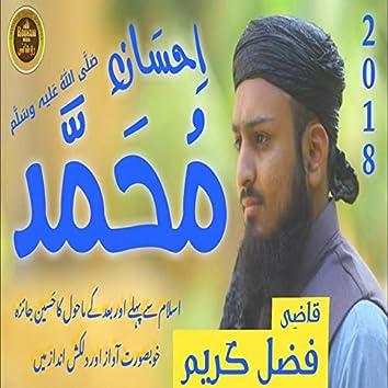 Ihsaan E Muhammad - Single