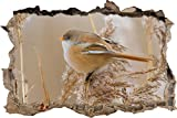 pixxp Blueprint 3D WD S1102_ 92x 62pequeño pájaro Gruesa sobre Herbstlicher Planta perforar Pared Adhesivo Pared en 3D, Vinilo, Multicolor, 92x 62x 0,02cm