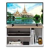 【24~32型推奨】アイリスオーヤマ テレビ台 テレビボード ミドルタイプ ナチュラル 幅約73.2cm 奥行29cm 高さ37.2cm 24型 オープン 組み立て 耐荷重10kg OTS-70B-N
