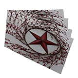 Mugod Placemats Western Country Red Stars Berries Patio Decorative Heat Resistant Non-Slip Washable Place Mats for Kitchen Table Mats Set of 4 12'x18'