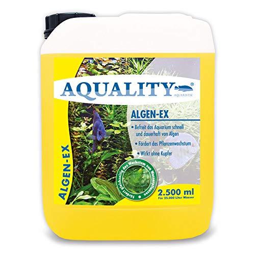 AQUALITY Aquarium Algen-EX (Erstklassiger Algenvernichter, Algenmittel, Algenentferner, Algenstopp - Befreit Fadenalgen, Bartalgen, Kieselalgen, Blau- + Schmieralgen), Inhalt:2.5 Liter