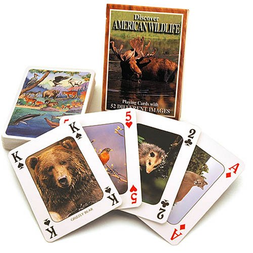 (American Wildlife) - Discover Series Fun Playing Cards - Informational & Educational