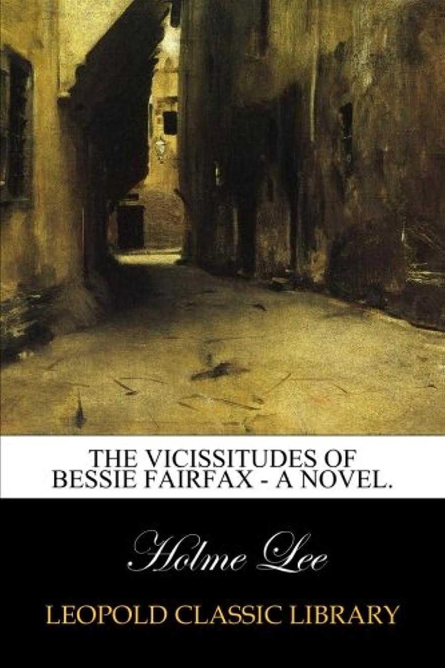 ちらつき子供っぽいラウンジThe Vicissitudes of Bessie Fairfax - A Novel.
