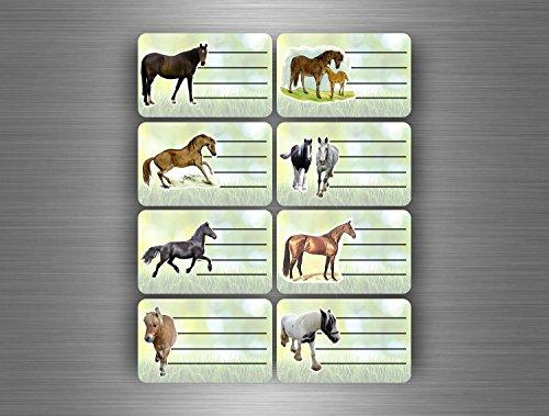Akachafactory stickers, 16 stuks, zelfklevend, voor schoolschrift/boek, mappen, paarden