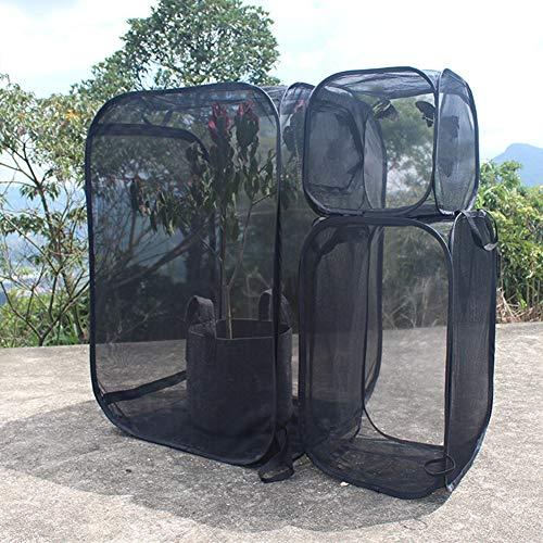 Bebliss Gabbia per Insetti a Prova di Farfalla Gabbia per Habitat per Piante Trasparenti Incubatrice Gabbia per Insetti Pieghevole Portatile, Maglia a Cinque Lati