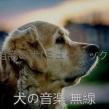 自宅の犬(ミュージック)