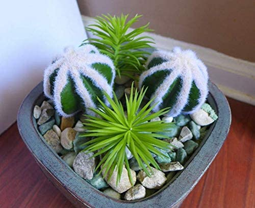 Succulents Artificial Flocking Indianapolis Mall Ball and Grass In stock 4 Get - Pcs Artifi