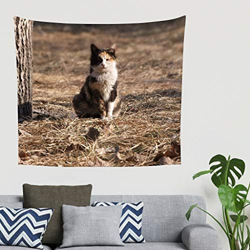 Gamoii Toalla de pared con diseño de gato con hierba marcada, toalla de playa, esterilla de yoga, toalla de playa de alta calidad, toalla blanca 100 x 150 cm