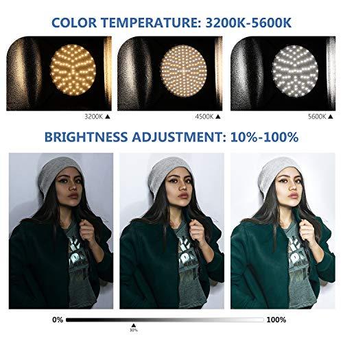 Neewer 2 Pack 2.4G LED Softbox Beleuchtungsset mit Farbfilter: 20 x 28 Zoll Softbox 3200-5600K 48W dimmbarer LED Licht mit Fernbedienung Lichtstativ Rot/Gelb/Blau Filter für Fotostudio