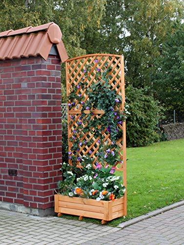 Promadino Rankkasten Flora 205 cm