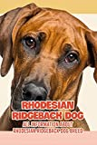 Rhodesian Ridgeback Dog: All Information About Rhodesian Ridgeback Dog Breed: How Well Do You Know About Rhodesian Ridgeback Dog? (English Edition)