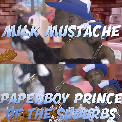 Paperboy Prince of the Suburbs