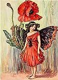 Pintar por Numeros Amapola Roja Niña Hada Flor DIY Cuadro al óleo con números para Kit de Pintura al óleo Digital para Adultos y niños de Lienzo decoración para el hogar 40x50cm Sin Marco