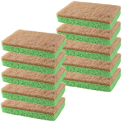 SCRUBIT Plant-Based Natural Scrub Sponge – Cleaning Sponges for Dishes, kitchen, Bathroom & More - Biodegradable Non-Scratch Dish Sponge Along with Heavy Duty Scouring Pad – 10 Pack