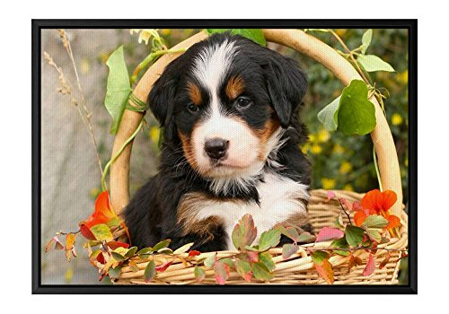 Hond Puppy Bloemen Mand Zwart Houten Frame Canvas Huis Decoratieve Schilderijen Art Print Decoratie Poster 16x24x1.4inch