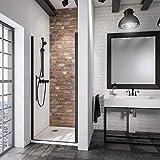 Schulte porte de douche pivotante, paroi en niche Black Style, verre transparent, profilé noir, 90x192 cm