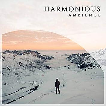 2020 Harmonious Ambience