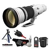 Canon EF 600mm f/4L is II USM Lens Professional Kit International Model