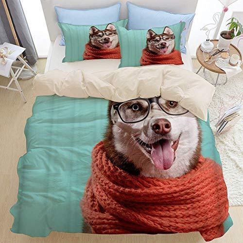 Set di biancheria da letto di qualità premium 3 pezzi, adorabili occhiali da sciarpa arancioni caldi del husky siberiano su turchese, set copripiumino moderno con cerniera deluxe ultimo unico morbido
