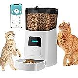 LaSoGi - Dispensador automático de pienso para gato, 6 L, wifi,...